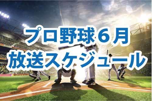 プロ野球バナー.jpg